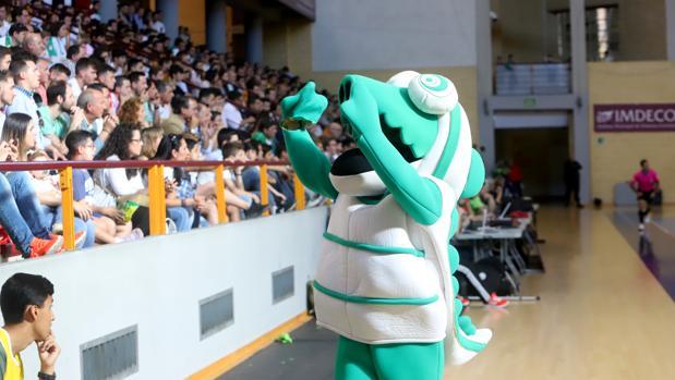 La mascota del Córdoba, Koki, en un partido del Itea en Vista Alegre