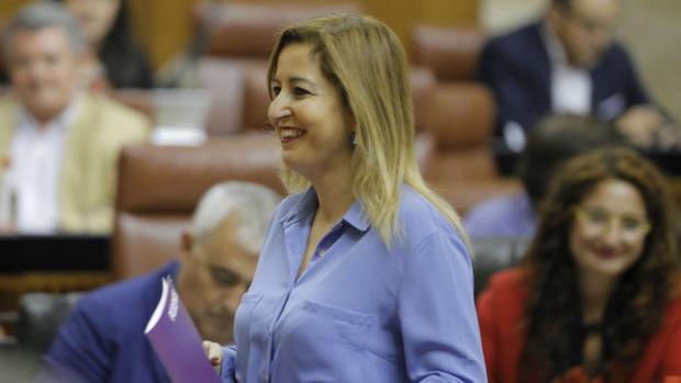 Carmen Lizárraga, en el Parlamento andaluz