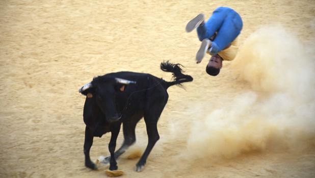 Una de las imágenes que ha dejado el Toro del Aguardiente de San Roque