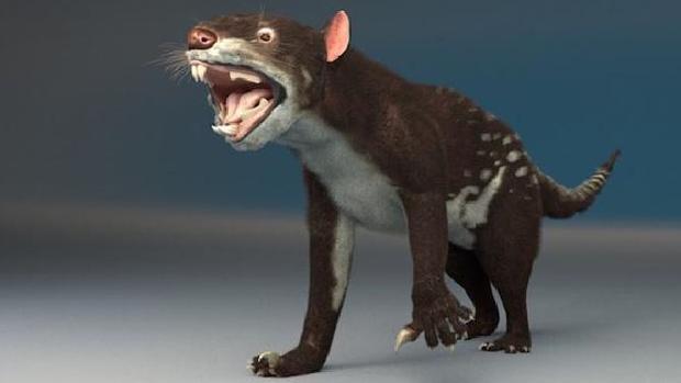Representación en 3D de un Thylacoleo carnifex o «león con bolsa asesino»