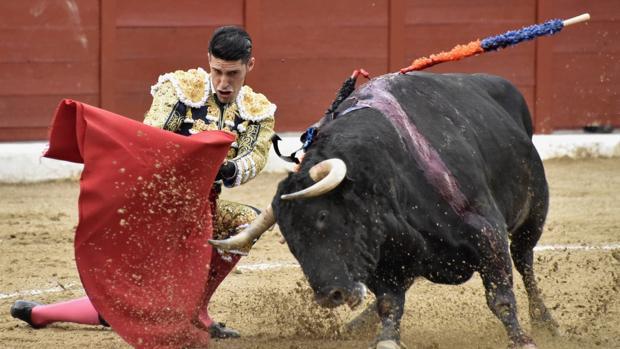 Alejandro Talavante se dobla con el toro