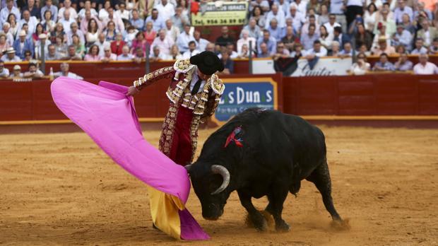 Los aficionados gaditanos al mundo del toro tienen estas oportunidades de disfrutar de su pasión en la provincia de Cádiz.
