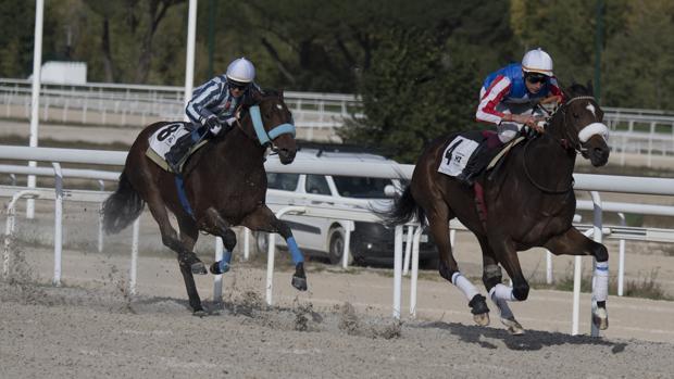 Carrera de caballos en el Hipódromo de la Zarzuela
