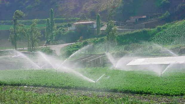 Los regantes del Guadalquivir no están conformes con el agua asignada para sus cultivos