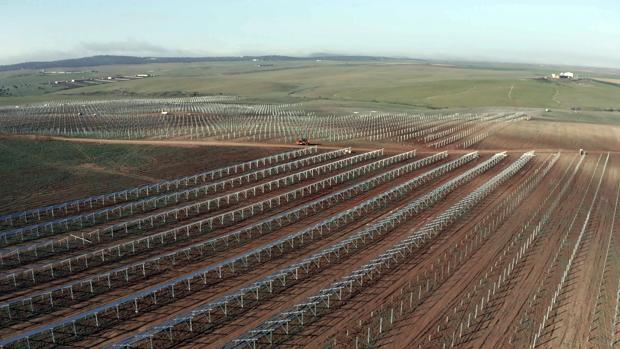 Planta fotovoltaica de Iberdrola en Extremadura