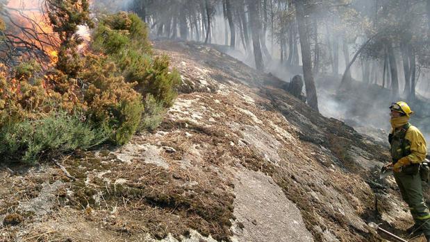 Incendio declarado el pasado fin de semana en la Sierra del Tiétar