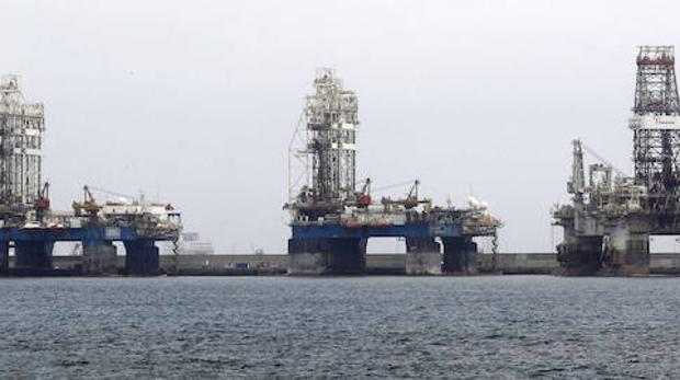 El puerto de Las Palmas ha visto proliferar en sus aguas peces del Golfo de Guinea