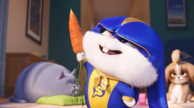 Uno de los protagonistas de «Mascotas 2»
