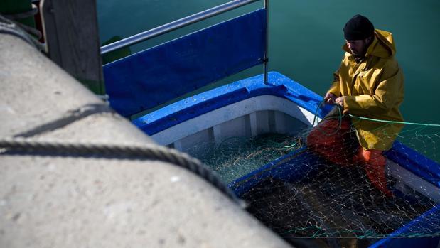 Un pescador manipulando una red de pesca en el puerto
