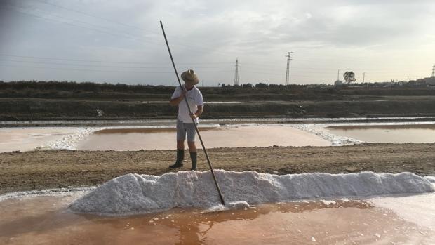 La salina San Vicente, en San Fernando, es una de las seis en toda España que producen flor de sal con los métodos tradicionales.