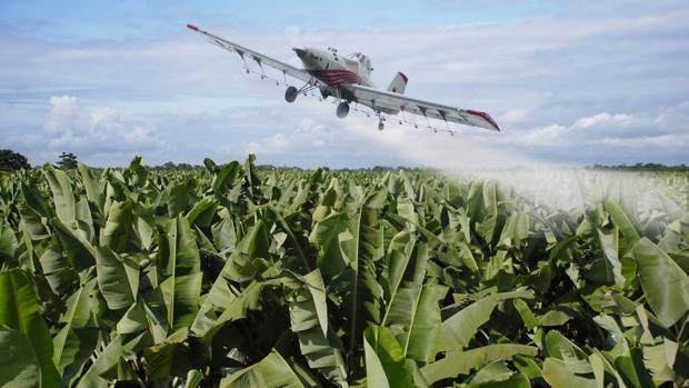Avión esparciendo glifosato